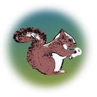 IdeaNut Logo